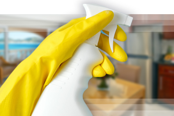 Hand with spray bottle for clean check